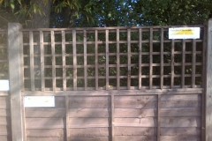 "WANEY PANEL WITH TRELLIS (3""SQ)"